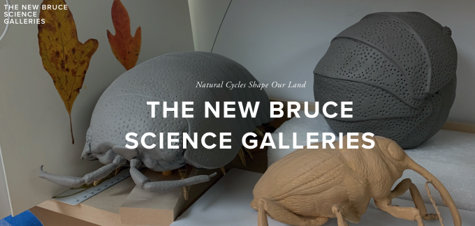 Member Discussion with Dr. Daniel Ksepka-The New Bruce Science Galleries